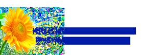 BDC Logo Blue 03222015D 300x113 - BDC-Logo_Blue_03222015D